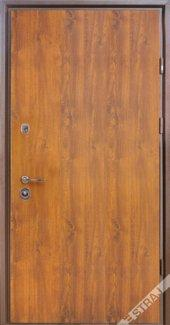 Двери Страж База PROOF венге, дуб темный, дуб золотой
