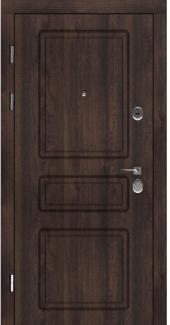 Входные двери Двери Rodos STZ 005 дуб темный