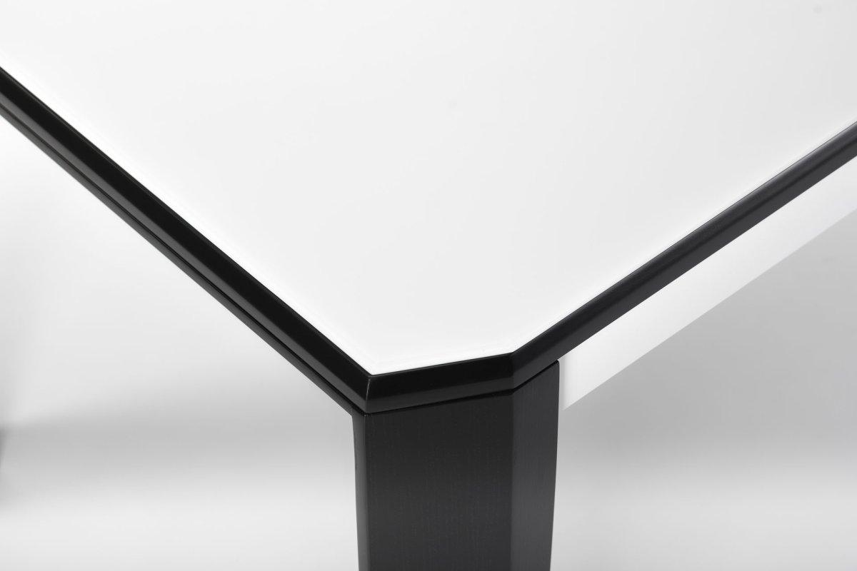 Фото Премьер стекло белый, черный стекло